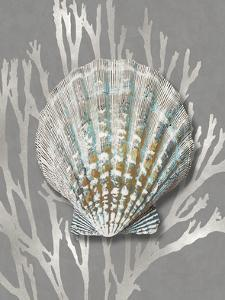 Shell Coral Silver on Gray IV by Caroline Kelly