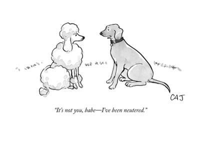 """It's not you, babe—I've been neutered."" - New Yorker Cartoon by Carolita Johnson"