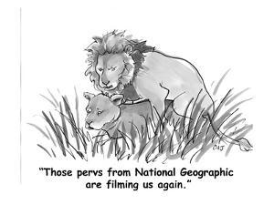 """""""Those pervs from National Geographic are filming us again."""" - Cartoon by Carolita Johnson"""