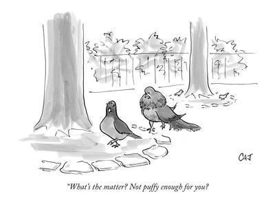 """""""What's the matter? Not puffy enough for you? - New Yorker Cartoon"""