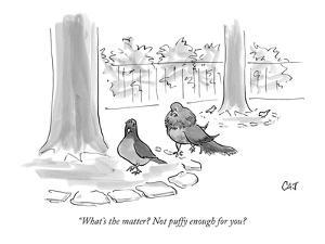 """What's the matter? Not puffy enough for you? - New Yorker Cartoon by Carolita Johnson"