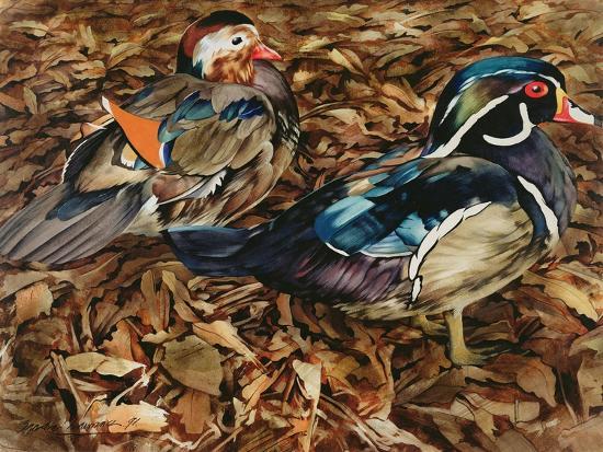 Carolonia Ducks, 1991-Sandra Lawrence-Giclee Print