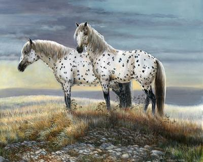 Appaloosa Sundown by Carolyn Mock