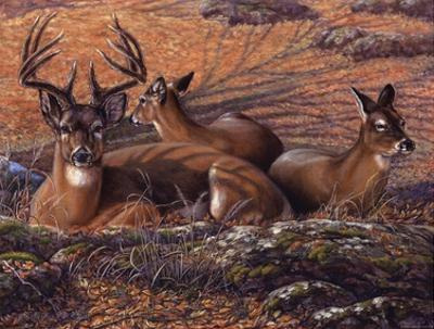 Bed of Leaves by Carolyn Mock