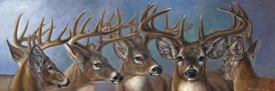 Five Bucks by Carolyn Mock