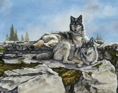 Mountain Morning by Carolyn Mock