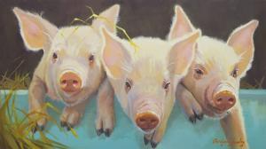 Life as a Pig I by Carolyne Hawley