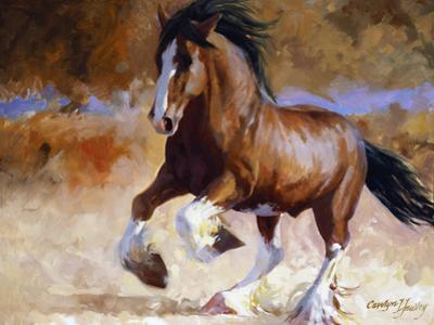 Rumi's Run by Carolyne Hawley
