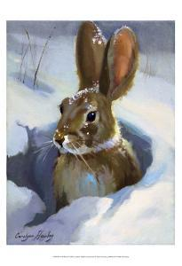 Snow Bunny by Carolyne Hawley