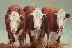 Three of a Kind by Carolyne Hawley