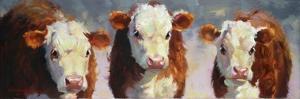 Winter Calves by Carolyne Hawley