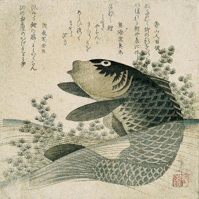 Carp Among Pond Plants, C.1800-Ryuryukyo Shinsai-Giclee Print