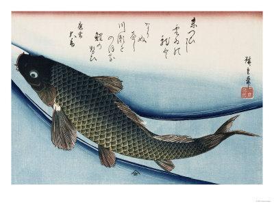 https://imgc.artprintimages.com/img/print/carp-from-the-series-collection-of-fish_u-l-p1ybky0.jpg?p=0