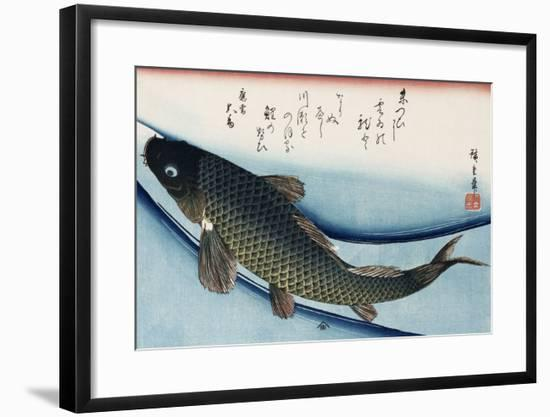 Carp', from the Series 'Collection of Fish'-Ando Hiroshige-Framed Premium Giclee Print