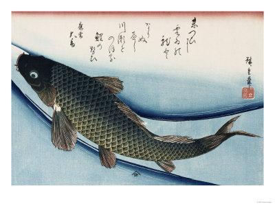 https://imgc.artprintimages.com/img/print/carp-from-the-series-collection-of-fish_u-l-p1ybl70.jpg?p=0