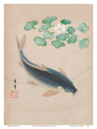 Carp with Water Flowers--Art Print