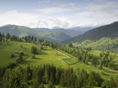 Carpathian Mountains North of Campulung Moldovenesc, Moldavia, Southern Bucovina, Romania, Europe-Gary Cook-Photographic Print