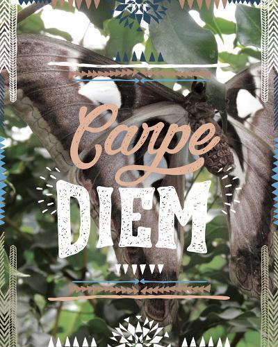Carpe Diem-Joana Joubert-Giclee Print