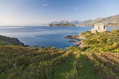 Carpino Bay, Scalea, Calabria, Italy-Peter Adams-Photographic Print