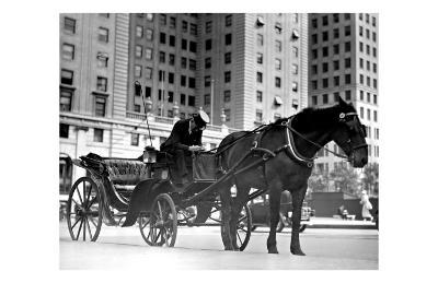 Carriage in Central Park, New York--Giclee Print