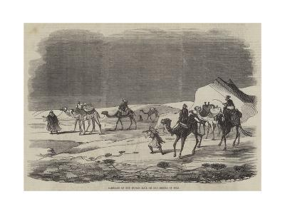 Carriage of the Indian Mail on the Desert of Suez--Giclee Print