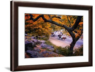 Carriage Ride, Central Park, New York City, United States of America, North America-Jim Nix-Framed Photographic Print