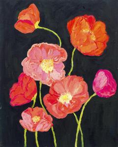 Sunshine Poppies by Carrie Schmitt