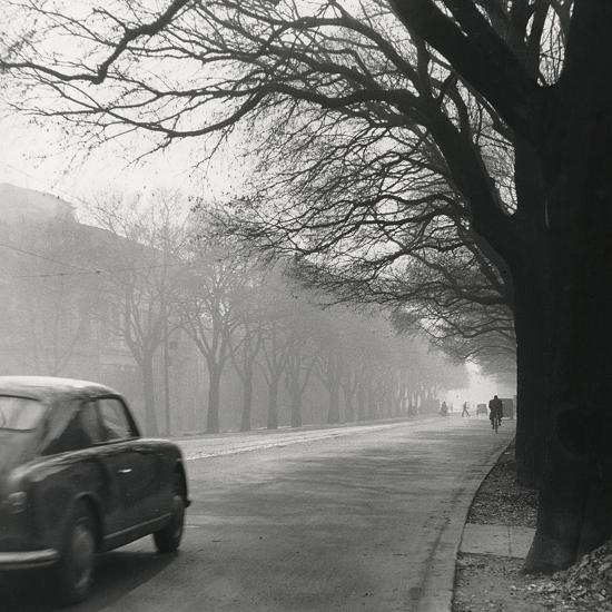 Cars on the Avenues with Fog-Renzo Ferrini-Photographic Print