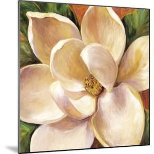 Magnolia Glow II by Carson