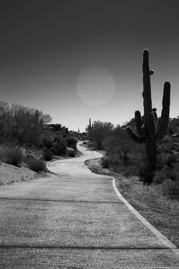 Cart Path on Desert Golf Course Arizona--Photo