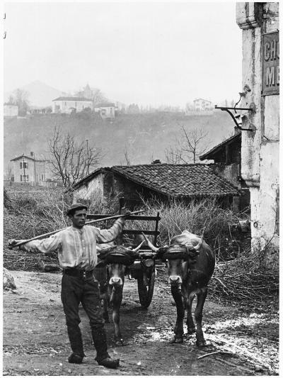 Cart Pulled by Two Oxen in the Basque Country, c. 1900- Ouvrard-Photographic Print
