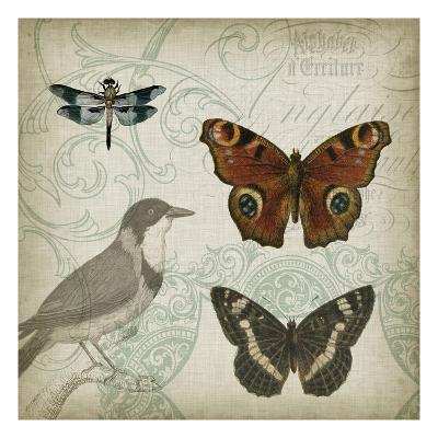 Cartouche and Wings IV-Jennifer Goldberger-Art Print