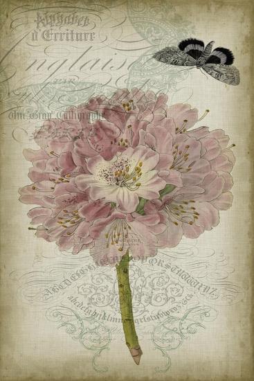 Cartouche & Floral II-Jennifer Goldberger-Art Print