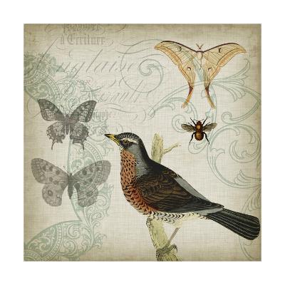 Cartouche & Wings II-Jennifer Goldberger-Art Print