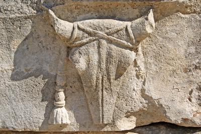 Carved Ox Skull or Bucranium, Letoon, Turkey--Photographic Print