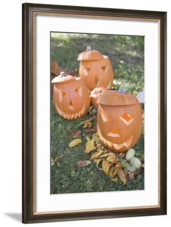 Carved Pumpkin Faces in Garden-Foodcollection-Framed Photographic Print