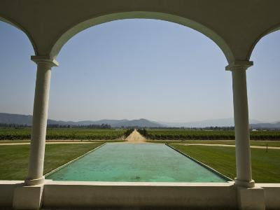Casablanca Valley, a Wine Growing Region West of Santiago, Chile-Richard Nowitz-Photographic Print