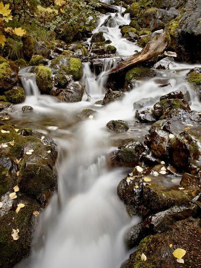 Cascade at Pioneer Falls, Alaska, United States of America, North America-James Hager-Photographic Print