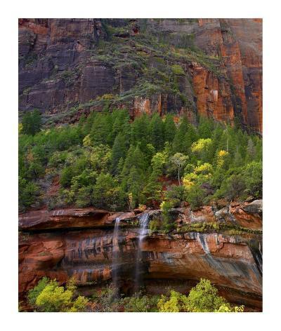 Cascades at Emerald Pools, Zion National Park, Utah-Tim Fitzharris-Art Print
