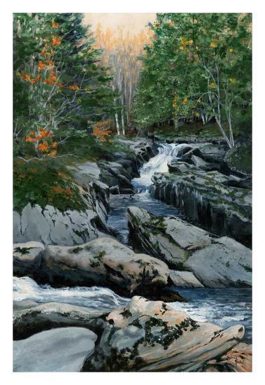 Cascades dans les Bois-Francs-Sylvia Audet-Art Print