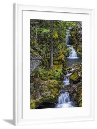 Cascading Waterfalls Along Falls Creek Near Nelson, British Columbia, Canada-Chuck Haney-Framed Photographic Print