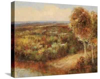 Case Distanti-Robin Scott-Stretched Canvas Print