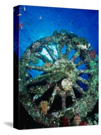 A Locomotive Wheel is One of the Remains of the Wreck of the Numidea, Sank in 1901, Egypt