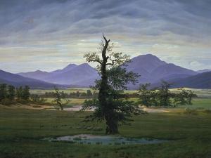 Der Einsame Baum (Dorflandschaft Bei Morgenbeleuchtung) (See also Image Number 1433, 1823 by Caspar David Friedrich