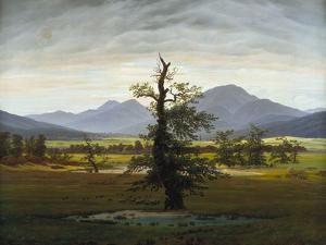 Solitary Tree (Village Landscape in Morning Light), 1822 by Caspar David Friedrich