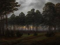 Hunter in the Forest, C.1814-Caspar David Friedrich-Giclee Print
