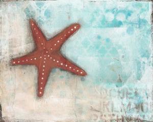 Starfish by Cassandra Cushman