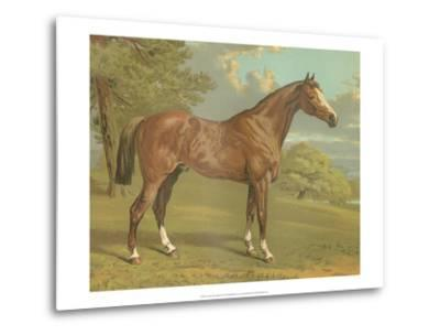 Cassell's Thoroughbred I-Cassell-Metal Print