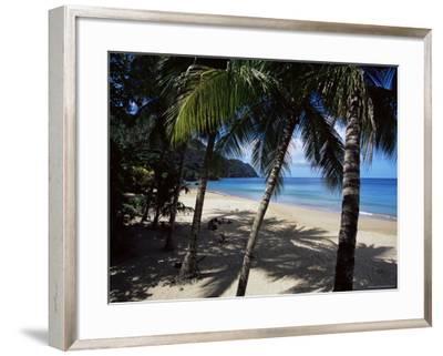 Castara Bay, Tobago, West Indies, Caribbean, Central America-Yadid Levy-Framed Photographic Print