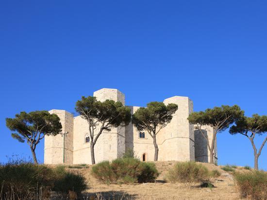 Castel del Monte (Federico II Castle), UNESCO World Heritage Site, Puglia, Italy, Europe-Vincenzo Lombardo-Photographic Print